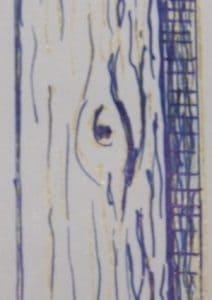 Wood texture technique in blue gel pen